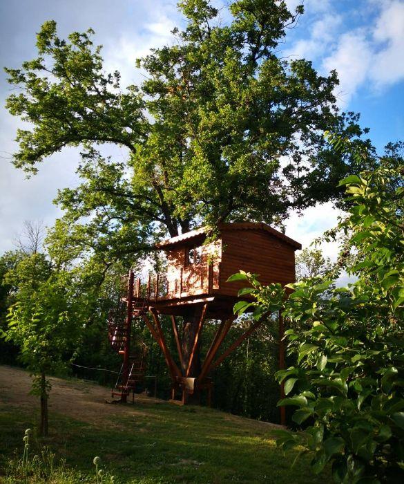 <p>Una scala a chiocciola in ferro e legno porta all'alloggio sull'albero che si adatta all'albero che la accoglie, una quercia secolare alta 28 metri con una circonferenza che arriva fino a 5,5 metri. In armonia con tutto il resto del grande parco, la piccola casa offre una verandina, un balconcino, bagno, doccia ed ogni confort e si erge nel bel mezzo di tre ettari di terreno tra orto biologico, boschi e sentieri.</p> <p><br /> </p>