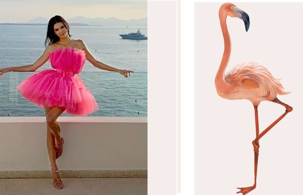 Flamingo Pose, tutto sulla tendenza Instagram dell'estate